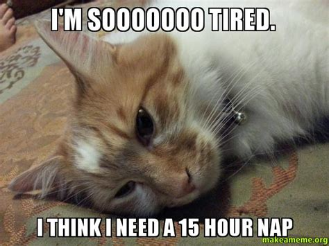 Tired Meme - i m sooooooo tired i think i need a 15 hour nap make