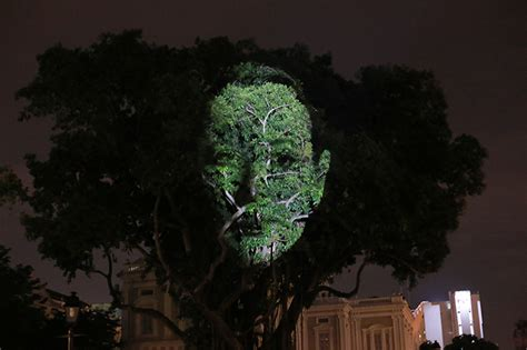 singapore trees of light singapore night festival 2017 10 light spectacles you