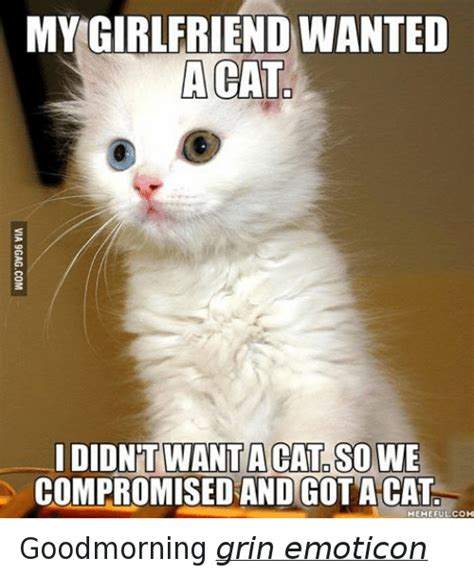 Good Cat Meme - good meme cat 28 images good cat memes image memes at