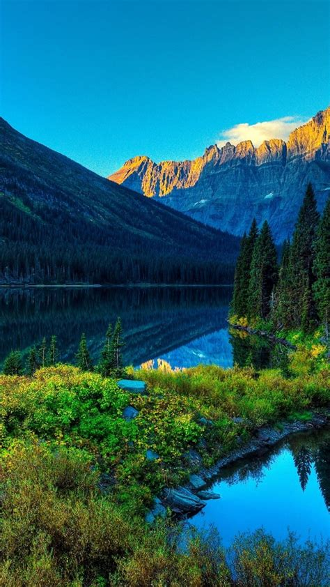 wallpaper river mountains forest  nature