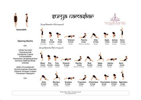 surya namaskaras yoga day 1 maliabecker