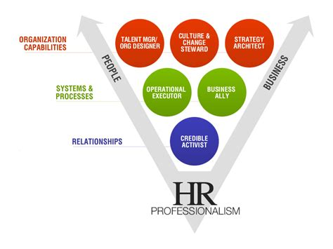 L Model Human Resources by Hr Competency Model Human Resources Management