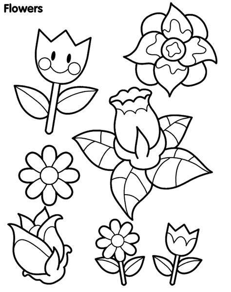 different flowers coloring pages sheets coloring