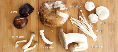 Home Decor Montreal Mushroom Dishes Foreign Creatures
