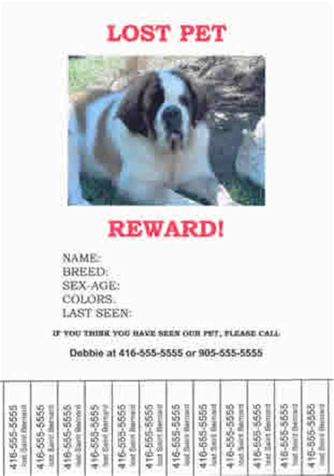Finding Lost Or Stolen Pets Lost Animal Template