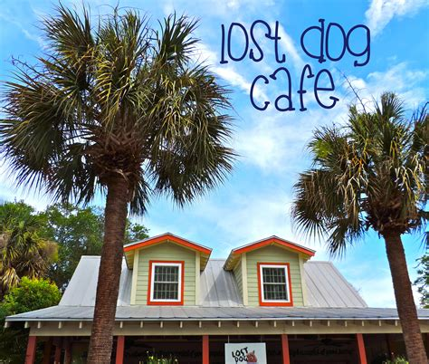 lost cafe lost cafe folly sc about columbus