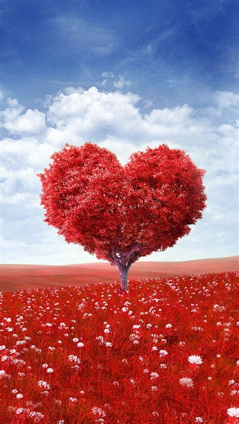 red love heart tree iphone     iphone  wallpapers