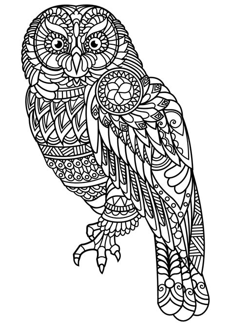 owl coloring pages for adults pdf free book owl owls coloring pages for adults justcolor