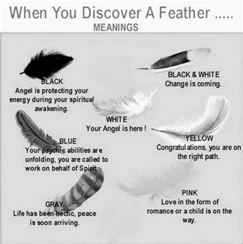 feather chart  meaning   color feathers