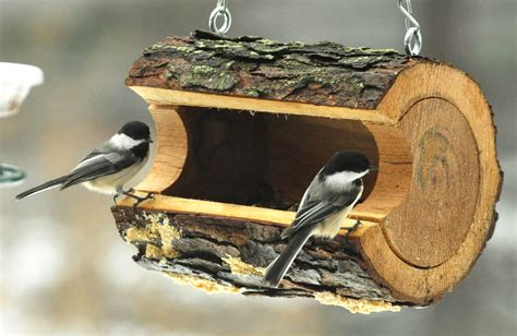 compelling unique bird feeder design ideas