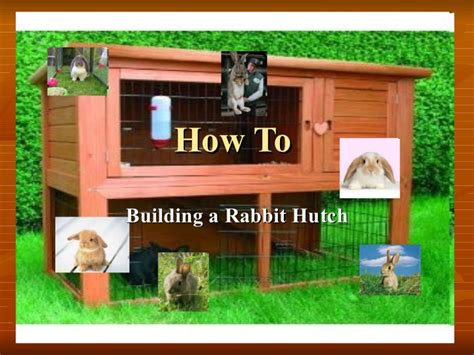 Kleiner Speisesaal Hutch by How To Make Building A Hutch Rabbit