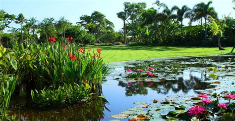 Naples Fl Botanical Garden Naples Botanical Garden Information Must Do Visitor Guides