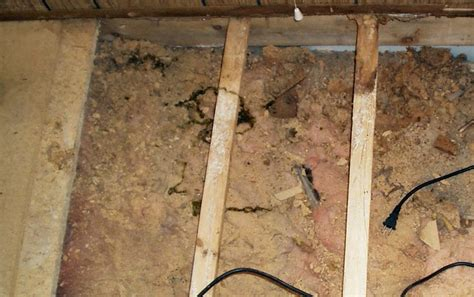 repairing rotten floor in your mobile home mobile home