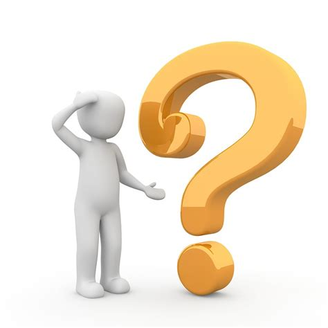 Or Question For Your Free Illustration Question Question Response Free Image On Pixabay 1020165