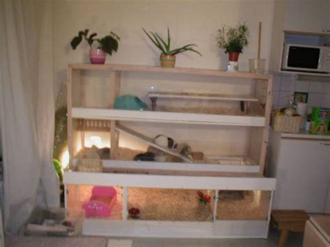 Guinea Pig Cage Shelf by Cupboards Guinea Pigs And Wardrobe On