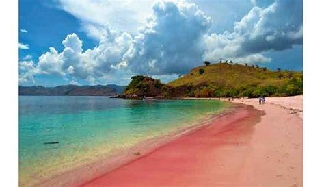 komodo island  pink beach picture  top komodo