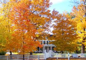 old house in autumn trees free stock photo public domain file zula linklater house fall hillsboro oregon jpg