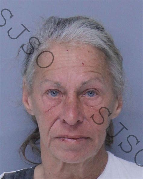 Johns County Arrest Records Sieber Inmate Sjso18jbn000242 St Johns