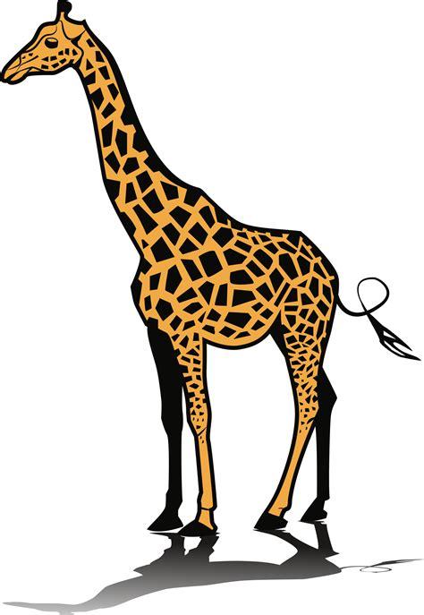 giraffe clip clipart giraffe 1