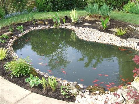 backyard fishing pond garden pond fish ponds pond cleaning pond construction surrey guildford london