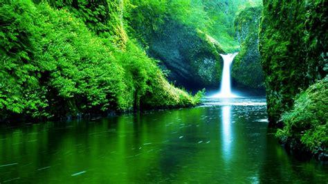 imagenes de naturaleza verdes descargar 1920x1080 paisajes del agua verde naturaleza
