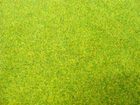 green grass background texture download photo green