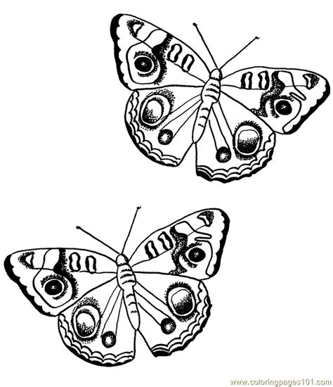 beautiful coloring pages of butterflies beautiful butterflies coloring page free butterfly