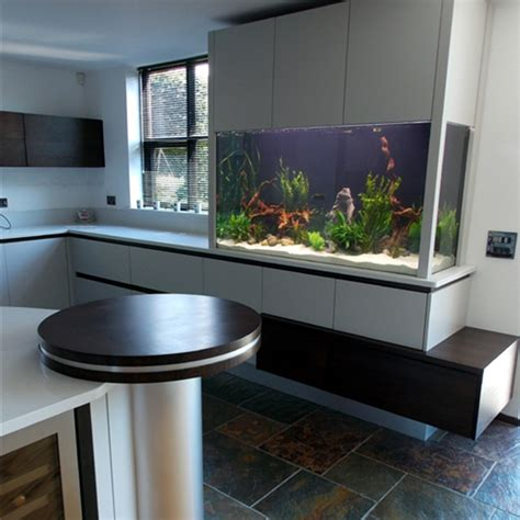 aquarium design ireland northern ireland bangor co down