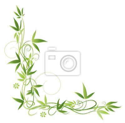 cornici fiorite carta da parati primavera cornice foglie foglie vite