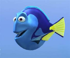 cartoon dory fish dory fish picture