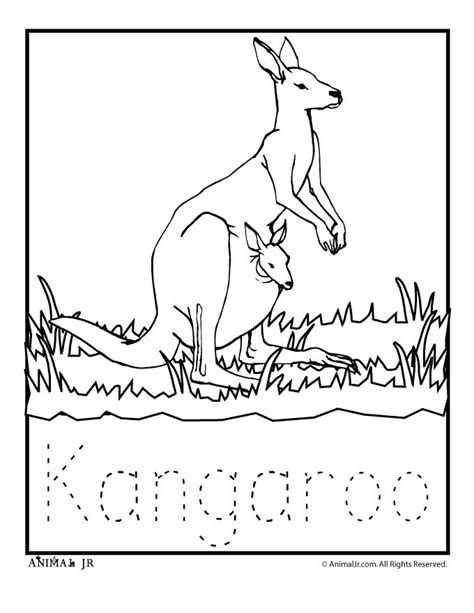 coloring page australian animals top 79 australia coloring pages free coloring page