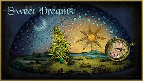 Sweet Dreams Meme - sweet dreams 420 weed memes weed memes