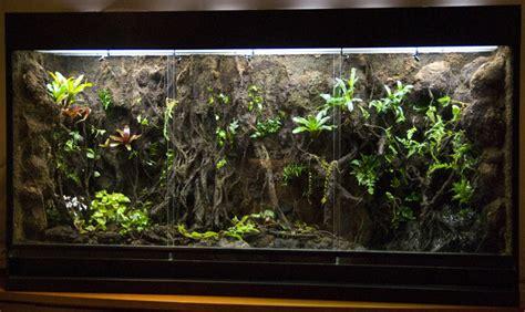 Aquarium Inrichting Ideeen by Goedkope Aquarium Inrichting Msnoel