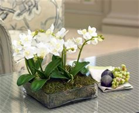 coffee table flower arrangements 1000 images about dressing up your coffee table on