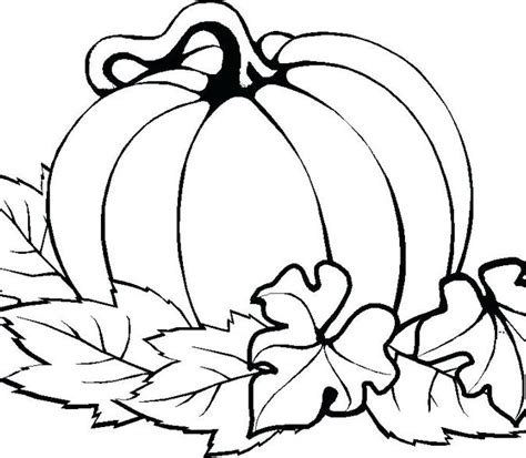 free printable pumpkin coloring pages picture of pumpkin to color free coloring page cvdlipids