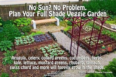 Raised Bed Shade Garden Ideas Gardening Pinterest Shade Vegetable Garden