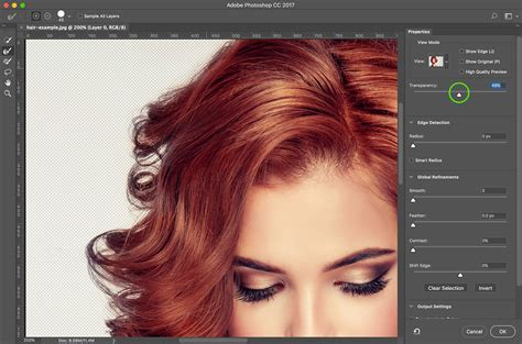 effect design hair select hair in photoshop cc using select mask think tank