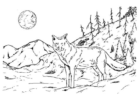 cartoon wolf coloring pages car pictures car canyon