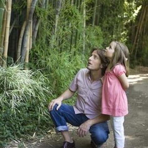 How Do I Get Rid Of Bamboo In Backyard by 1000 Images About Bamboo On Root System How