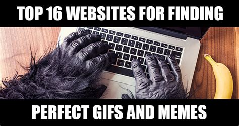 Best Meme Websites - top 16 websites for finding perfect gifs and memes sej
