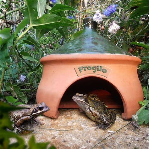 frog house frogilo frog and toad shelter rspb wildlife rspb shop
