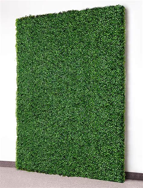 Floors And Decor Locations by Faux Boxwood Wall Panels For Rent Event Rentals