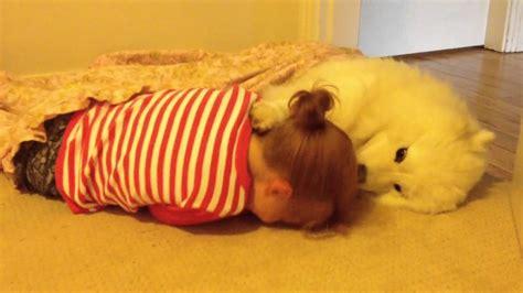 buy samoyed puppy samoyed puppy hugs 4