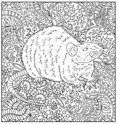 rat  floral patterns mouses adult coloring pages