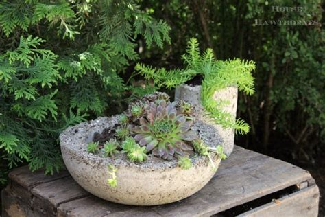How To Make Lightweight Concrete Planters by How To Make Hypertufa Planters House Of Hawthornes
