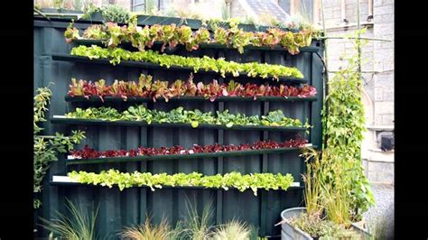stunning vertical vegetable gardening
