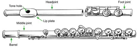 flute diagram labeled how to play flute for beginners