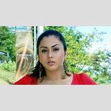 Namitha Weight Gain 2017 | 504 x 264 jpeg 34kB
