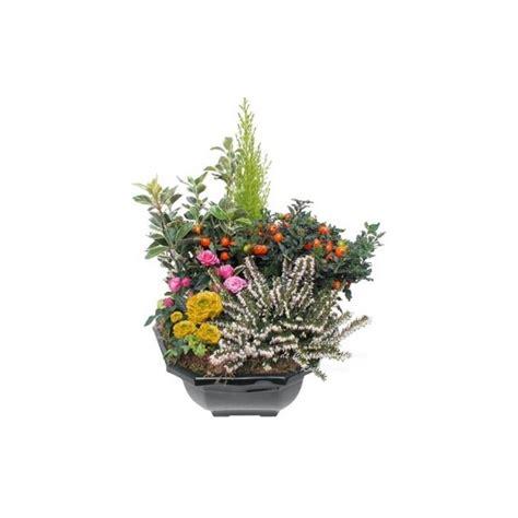 coupe de plantes deuil quietude