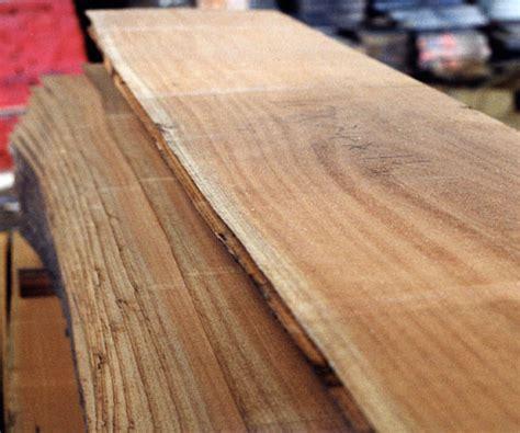 macam ciri ciri kayu toko kayu jati asli